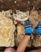 Restauration de murets en pierre sèche - Chantier participatif