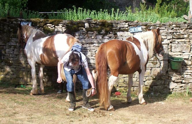 Ferme Equestre Chez Valdine 7 - Calvignac
