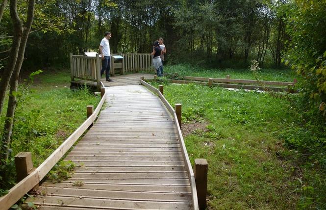 Réserve Naturelle Régionale du Marais de Bonnefont 19 - Mayrinhac-Lentour