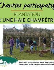 Chantier-plantation-haie-champetre