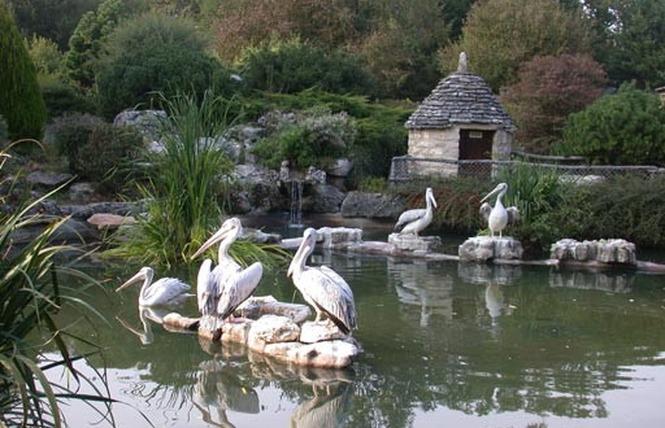 Parc Animalier de Gramat 26 - Gramat