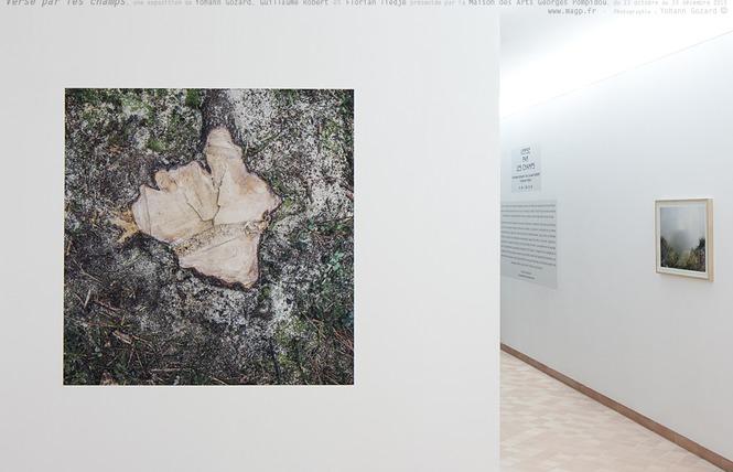 MAGCP - Maison des arts Georges et Claude Pompidou 21 - Cajarc