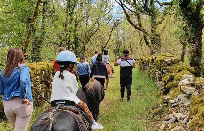 Ferme Equestre Chez Maiwenn 2 - Calvignac