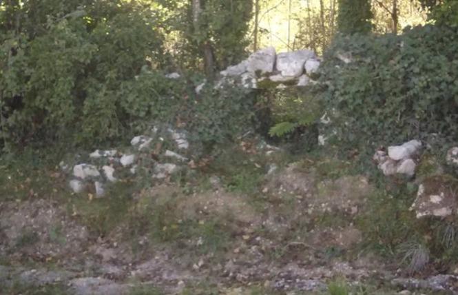 Un paysage façonné par la brebis 8 - Espédaillac