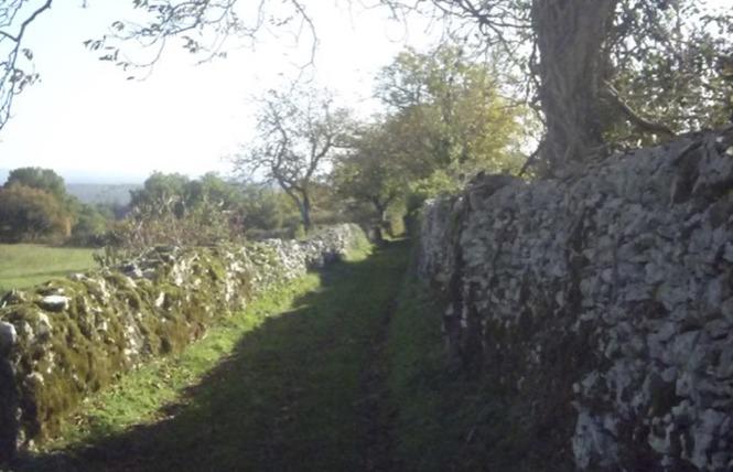 Un paysage façonné par la brebis 5 - Espédaillac
