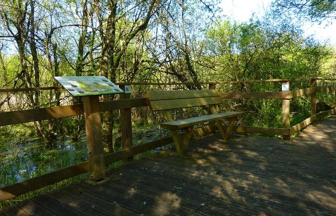 Le Marais de Bonnefont, Réserve Naturelle Régionale 10 - Mayrinhac-Lentour
